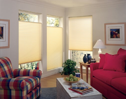 pleated window treatments