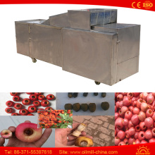 Top Quality Pitter Olives Cherry Pitter Machine Olive Pitting Machine