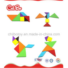 Tangram Puzzle für Pädagogisches Spielzeug (CB-ED001-S)