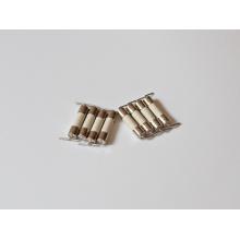 Fusible en céramique de tube à haute tension 125V / 250V 210 (H)