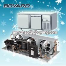 condensateur horizontal de compresseur de réfrigération pour l'unité de refroidissement de pièce froide
