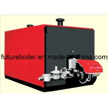 Caldera de agua caliente del paquete (100 - 3500KW)