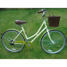 Bicicleta de bicicleta de 6 velocidades trasera de alto grado (FP-LDB-006)