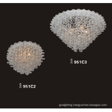 Modern High Quality Carbon Steel Glass Ceiling Lighting Fixtures (951C2)