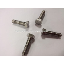 Tornillo de cabeza hexagonal M10 de acero inoxidable A4-80