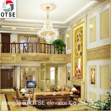 OTSE panoramic villa elevator/Small home elevator