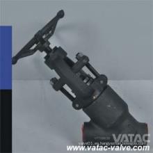 A105 / F304 / F316 Y Tipo de válvula de globo