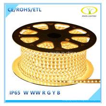 ETL listó 110V LED Light Strip con SMD5050