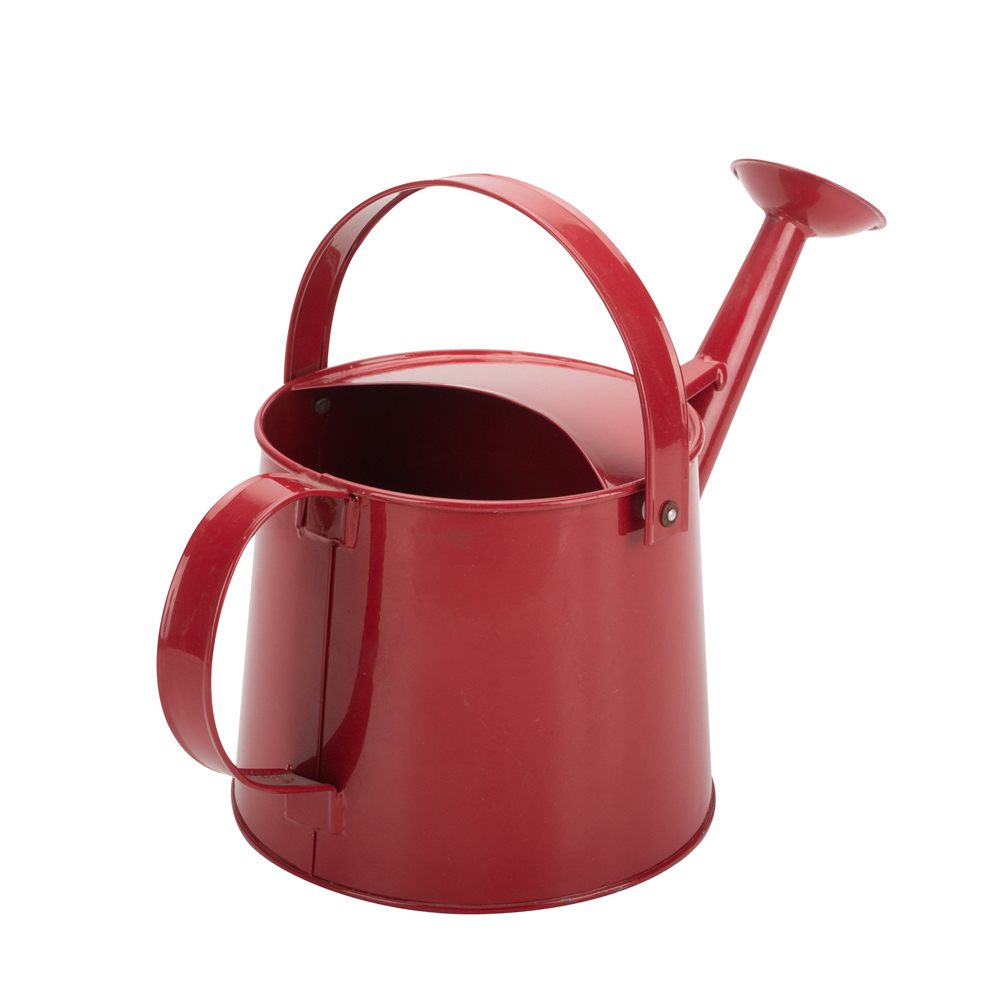 Galvenized Watering Can