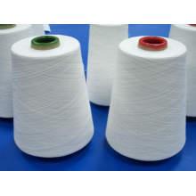Fil de polyester filé pour le fil de couture (30s / 2)