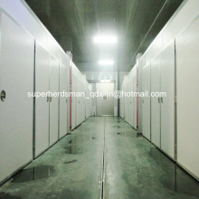 Высокое качество оборудования для Инкубаториев для курицы