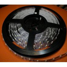 5730 60LED 10mm 12V 24W 5m/Reel Bande Flexible LED Blanche