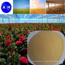 Hot Sale Organic Calcium Amino Acid Fertilisant De qualité chétoate de chaux Aminoacide