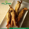 Natural Dried Red Panax Ginseng Root