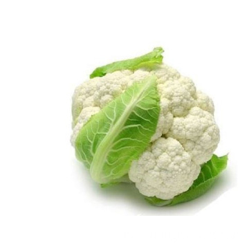 High Quality Fresh Cauliflower