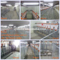 2018 popular gestation crate pig farm use hot galvanized sow crates