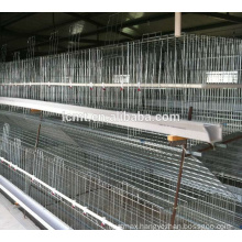 good quality poultry equipments for broiler chicken cage
