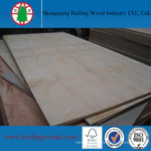 High Grade Pine Shutter Plywood for Construction