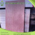 Professionally Supply 3′x6′ 3′x7′ 3′x8′ Bintangor Door Skin Plywood