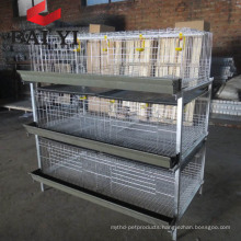 Automatic Drinking System Broiler Wire Cage Mesh/ Broiler Cage for Sale in Kenya