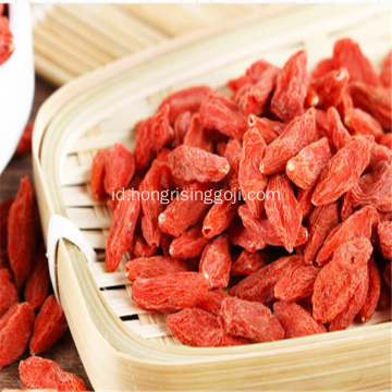 Nature Ningxia Goji Berries wolfberry