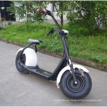 Proveedor de China 1000W Scooter eléctrico con Bluetooth (JY-ES005)