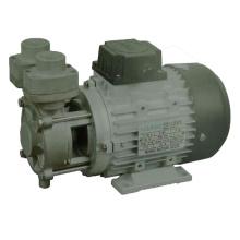 Kraftstoffpumpe der Tsr-Serie für den Einsatz bei hohen Temperaturen