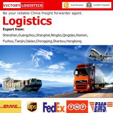 Agente de transporte/Forwarder/logística de mercadorias da China para logística em todo o mundo