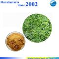 GMP factory supply high quality pure nature Portulaca Oleracea Extract , Portusana Purslane Extract