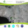 Hidróxido de sodio soda cáustica perla escama 99% Fabricante