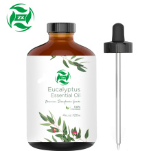 Natural Plant Extract Organic eucalyptus oil