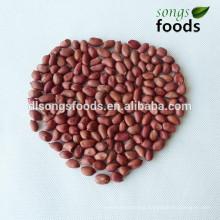 High Quality Indian peanut kernels