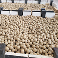 Shuttle Ofen Rolling High Alumina Ball