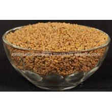 fenugreek seeds india