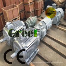 AC Brushless 3 Phase 5kw 220V Permanent Magnet Synchronous Generator