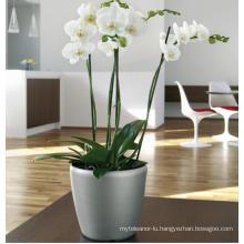 (BC-F1039) Fashionable Design Plastic Self-Watering Flower Pot