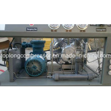 Главная Компрессор для компрессора CNG для автозаправочных станций (BV-3.5A)