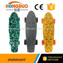 22 Inch flying water transfer Fish Skateboard, longboard skateboards for kids