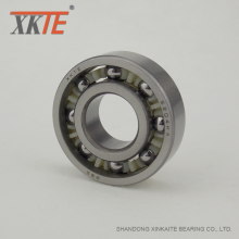 Polyamidbur BB1B420204 C3 Bearing For Idler Roller