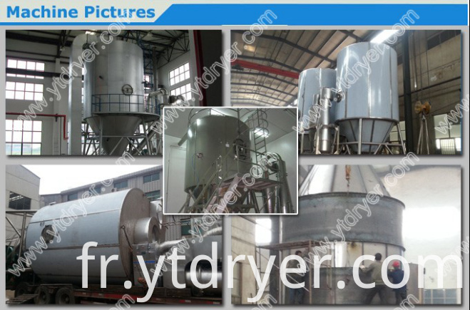 Yamatov style spray dryer