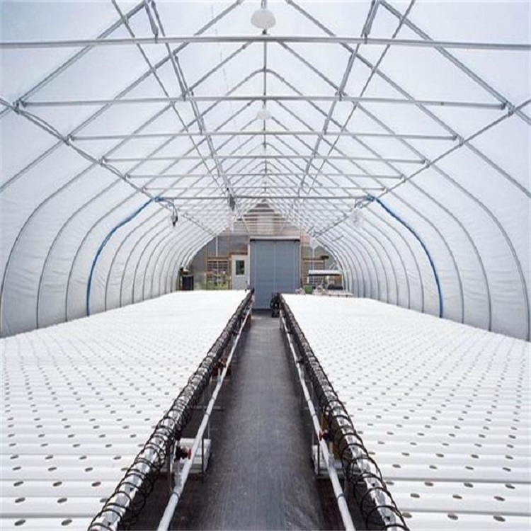 Agricultural-Greenhouse-Flat-Hydroponics-commercial-hydroponics