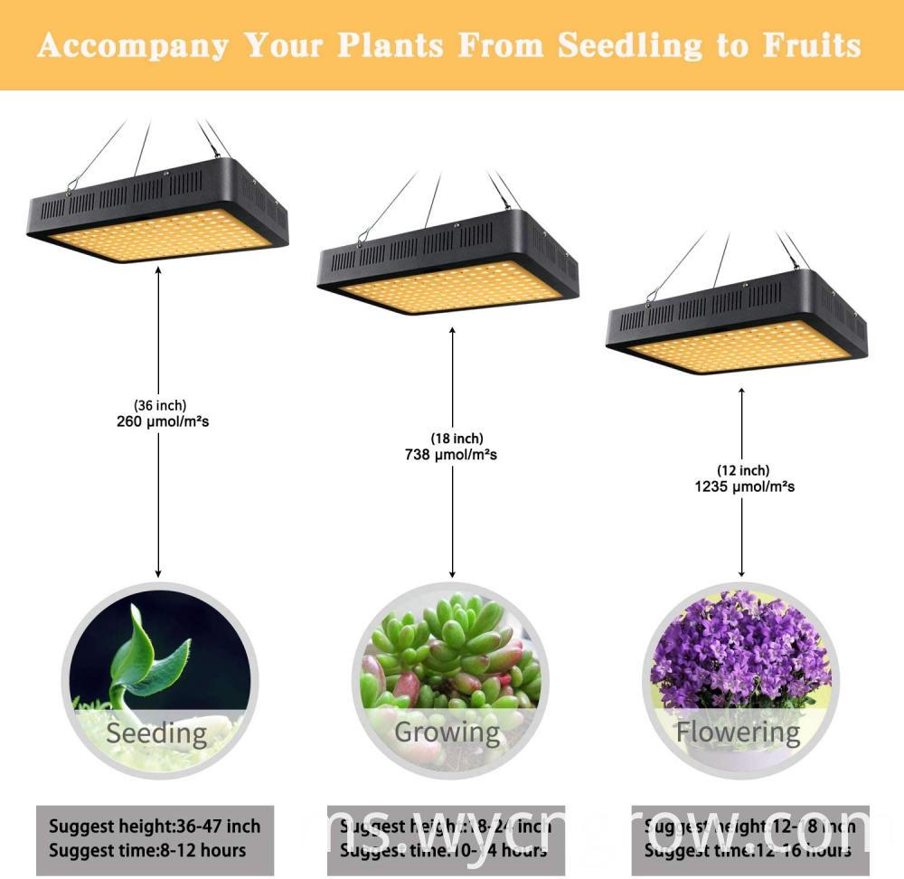 1500w grow light for indoor