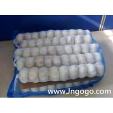 20kg Mesh Bag Embalagem Alho Branco Puro