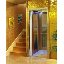 Shandong Fjzy Villa Elevator with High Quality