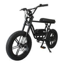 China Cheap Sport 1000w 48v Mountain E Bike Electric Bicycle Ebike Fat Tire Dirt Electric Bike