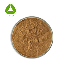 Herbal Extracts Fennel Extract Powder 10:1