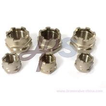 Forgeage en laiton Mâle ou femelle PPR Insert pour tuyau en plastique PPR