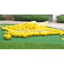 Practice Golf Balls 2 Layer Training Ball With Dupont Surlyn Synthetic Rubber