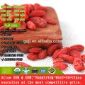 Beste Bio-zertifizierte Ernährung Goji Berry mit hoher Qualität