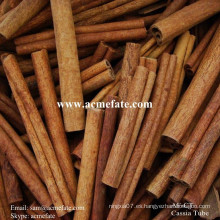 Popular cassia cassia cinamomo con calidad superior